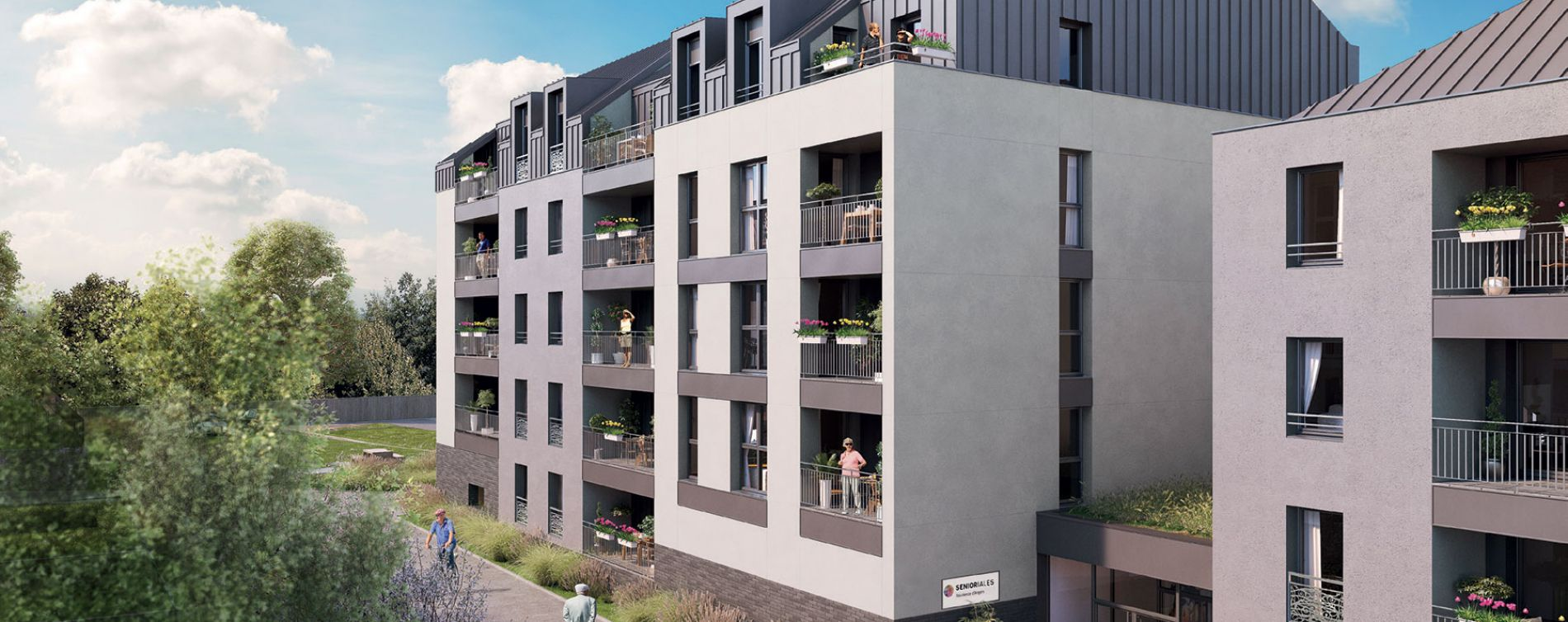 Angers : programme immobilier neuve « Sénioriales - Angers »