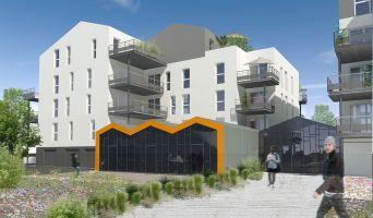 Résidence « Le Séquoïa » programme immobilier neuf à La Roche-sur-Yon n°4