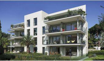 Programme immobilier n°214811 n°4