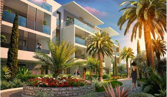 Photo n°4 du Résidence neuf « Palm Horizon »