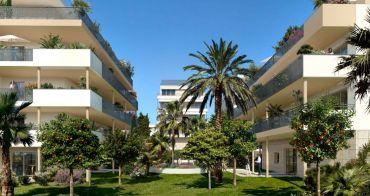 Résidence à Cannes, quartier Pointe Croisette réf. n°215733