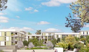 Programme immobilier neuf à Aubagne (13400)