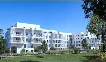 Photo n°1 du Programme immobilier n°216386