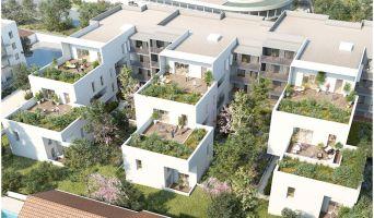 Programme immobilier neuf à Marseille (13009)