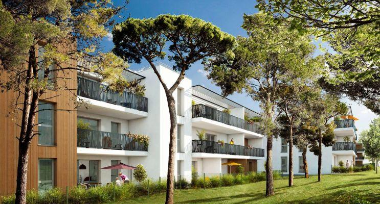 Programme immobilier n°215267 n°2