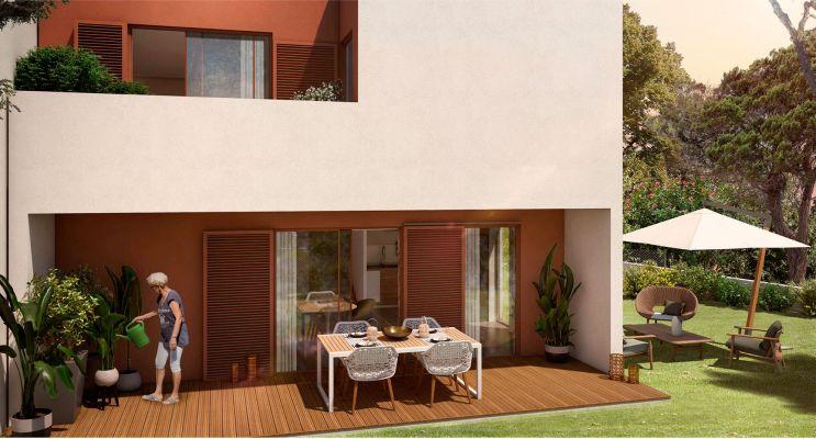 Programme immobilier n°216353 n°4