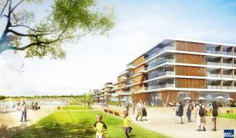 Monteux programme immobilier neuve « Le Patio du Lac » en Loi Pinel  (3)