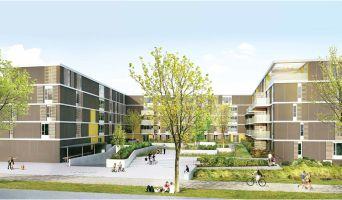 Monteux programme immobilier neuve « Le Patio du Lac » en Loi Pinel  (4)